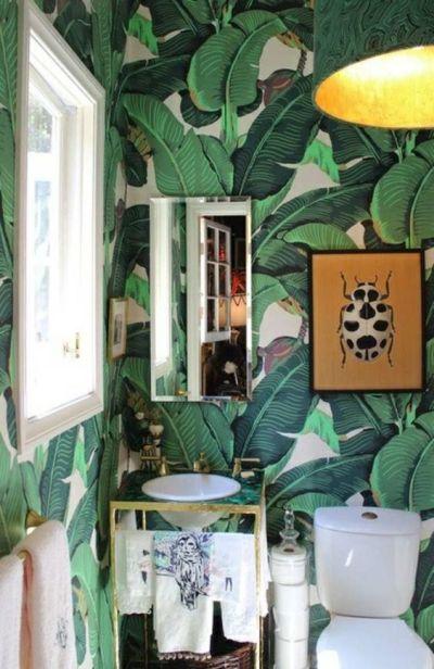 toilettes-plantes