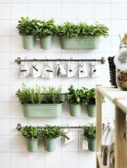 herbes-aromatiques-deco